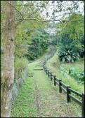 內湖風景區及步道:碧湖步道-3_017.jpg