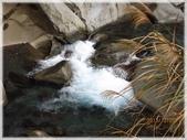 尖石鄉、秀巒村、青蛙石、薰衣草森林:青蛙石_054.JPG