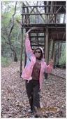 尖石鄉、秀巒村、青蛙石、薰衣草森林:秀巒村楓樹林-1_20.JPG