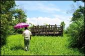 三峽風景區:紫微天后宮步道探路_063.jpg