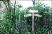 三峽風景區:紫微天后宮步道探路_064.jpg