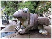 尖石鄉、秀巒村、青蛙石、薰衣草森林:青蛙石_045.jpg