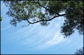 三峽風景區:紫微聖母環山步道探路_008.jpg