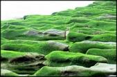 三芝、石門地區:老梅綠石槽_611.jpg