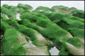 三芝、石門地區:老梅綠石槽_633.jpg