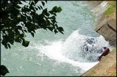 桃園地區風景區:1-16號大圳埤塘_015.jpg