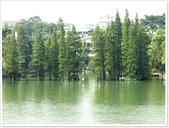 大陸桂林五日遊:4湖-11_083.jpg