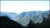 尖石鄉、秀巒村、青蛙石、薰衣草森林:秀巒楓樹林-1_010.jpg