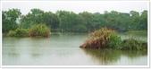 大溪老街‧公園、八德埤塘生態公園、大古山步道:八德埤塘生態公園-1_022.jpg