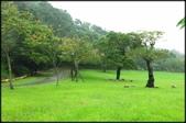 大溪老街‧公園、八德埤塘生態公園、大古山步道:大溪河濱公園_021.JPG