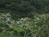 鄭漢步道、龍昇湖、將軍牛乳廠、頭屋三窪坑步道:頭屋三窪坑步道 093