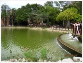 台灣大學杜鵑花、醉月湖:台大醉月湖_3818.jpg
