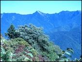 中部旅遊:楓之谷_005.jpg