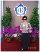 立法院、台北賓館、自由廣場、中正紀念堂:參觀立法院_4896.JPG