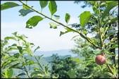 三峽風景區:紫微聖母環山步道探路_006.jpg