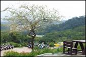 基隆旅遊、情人湖、海興森林步道、七堵車站、紅淡山:大牛稠登山步道_083.jpg