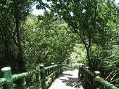 三芝、石門地區:石門青山瀑布一日遊 040.jpg