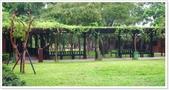 大溪老街‧公園、八德埤塘生態公園、大古山步道:八德埤塘生態公園-1_003.jpg