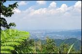 三峽風景區:紫微天后宮步道探路_074.jpg