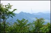 三峽風景區:紫微天后宮步道探路_096.jpg