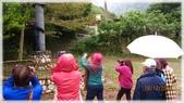 尖石鄉、秀巒村、青蛙石、薰衣草森林:陽具公園-1_001.jpg