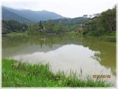 南庄、通霄地區景點:向天湖_034.jpg