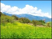 中部旅遊:福壽山農場_070.jpg