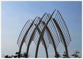 金山法鼓山、獅頭山公園、朱銘美術館:金山小白鶴長大了_281.jpg