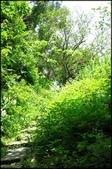 基隆旅遊、情人湖、海興森林步道、七堵車站、紅淡山:串珠二沙灣步道_007.jpg
