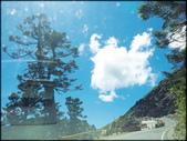 中部旅遊:合歡山_014.jpg
