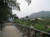 大溪遊客中心、頭寮生態步、道衛兵、11指古道:頭寮生態步道 023