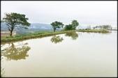 三芝、石門地區:三芝水中央_005.jpg