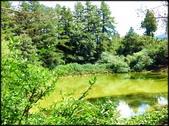 中部旅遊:福壽山農場_039.jpg