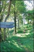 三峽風景區:紫微聖母環山步道探路_041.jpg