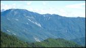 中部旅遊:合歡山-1_002.jpg