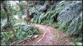 基隆旅遊、情人湖、海興森林步道、七堵車站、紅淡山:大牛稠登山步道-1_008.jpg