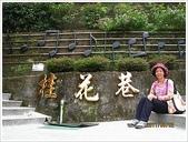 南庄、通霄地區景點:南庄桂花巷_8246.JPG