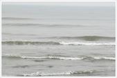 永安漁港‧新屋綠色走廊、范姜古厝:永安漁港‧新屋綠色走廊_004.JPG