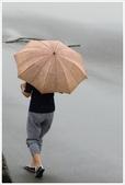 永安漁港‧新屋綠色走廊、范姜古厝:永安漁港‧新屋綠色走廊_008.JPG