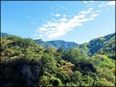 尖石鄉、秀巒村、青蛙石、薰衣草森林:秀巒楓樹林_05.jpg