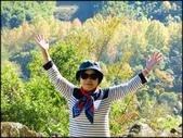 尖石鄉、秀巒村、青蛙石、薰衣草森林:秀巒楓樹林_10.jpg