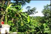 三峽風景區:紫微聖母環山步道探路_014.jpg