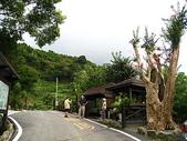 三峽風景區:花岩山林 044.jpg