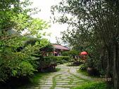 南庄、通霄地區景點:南庄桂花園 014.jpg