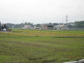 鄭漢步道、龍昇湖、將軍牛乳廠、頭屋三窪坑步道:頭屋三窪坑步道 119