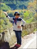 尖石鄉、秀巒村、青蛙石、薰衣草森林:秀巒楓樹林_13.jpg