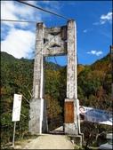 尖石鄉、秀巒村、青蛙石、薰衣草森林:秀巒楓樹林_39.JPG