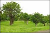 三坑老街自然生態公園、石門大圳、小粗坑古道:三土亢自然生態園區_014.jpg