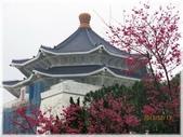 立法院、台北賓館、自由廣場、中正紀念堂:中正紀念堂賞櫻_042.JPG