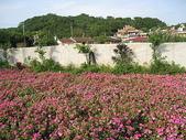 鄭漢步道、龍昇湖、將軍牛乳廠、頭屋三窪坑步道:頭屋三窪坑步道 117